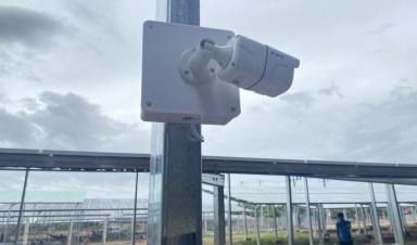 FPT Camera ôm trọn niềm tin từ các Dự Án năng lượng điện mặt trời tại Ninh Thuận